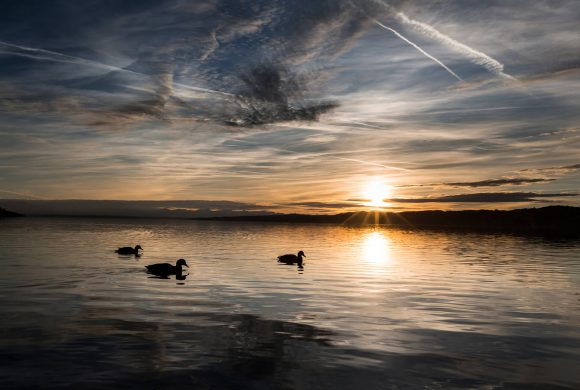Starnberger See Reportage